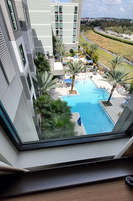 A view of the pool and palm trees from a window above