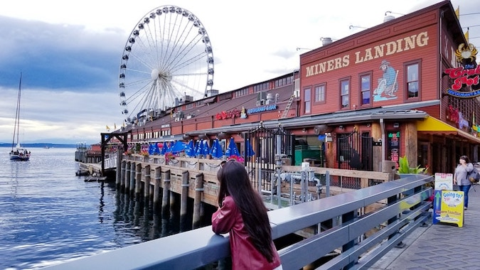 Geeves enjoying the vide of the water and ferris wheel at Waterfront Park Seattle
