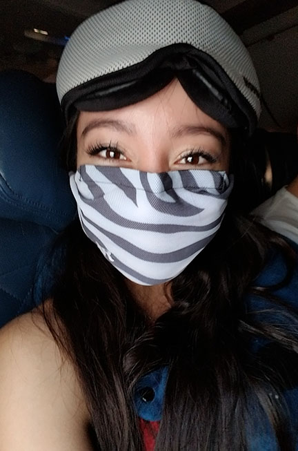 Geeves wearing a zebra striped mask on airplane